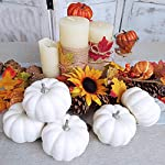 BESTTOYHOME-8-Realistic-4-Fall-Harvest-Small-Off-White-Mini-Artificial-Pumpkins-for-Halloween-Fall-and-Thanksgiving-Decorating