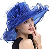 Original One Women's Organza Feathers/veil Party Occasion Event Kentucky Derby Church Dress Sun Hat Cap (Royal)