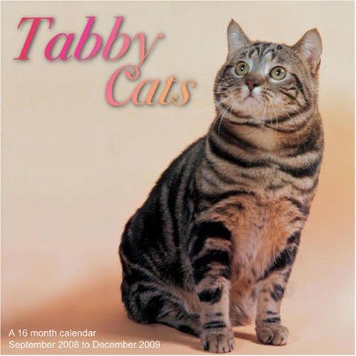 Tabby Cats 2009 Wall Calendar