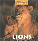 Lions, Susan Schafer, 0761411666