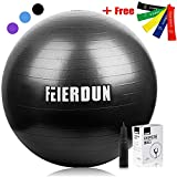 FEIERDUN Exercise Ball (Multiple Sizes) Swiss Ball Supporting 2200lbs for Yoga,Stability,Fitness,Balance,Home,Desk Chair & Gym - a Hand Pump & 5 Resistance Loop Bands Included