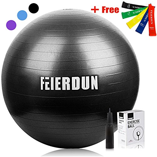 FEIERDUN Exercise Ball (Multiple Sizes) Swiss Ball Supporting 2200lbs for Yoga,Stability,Fitness,Balance,Home,Desk Chair & Gym - a Hand Pump & 5 Resistance Loop Bands Included by FEIERDUN