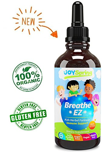 Organic Kids Cough Syrup - Liquid Cough Drops for Congestion, Allergy & Sinus Relief, Elderberry Cough Suppressant & Sinus Cleaner, Sinus Buster for Fast Cough Relief, 1 oz