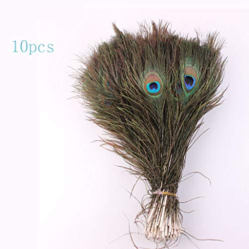 Gotian Lots 10PCS Natural Real Peacock Tail Eye Feathers DIY Crafts Peacock Feather House Room Office Parlor Hotel Decoration 23-30cm/10-12Inches ()