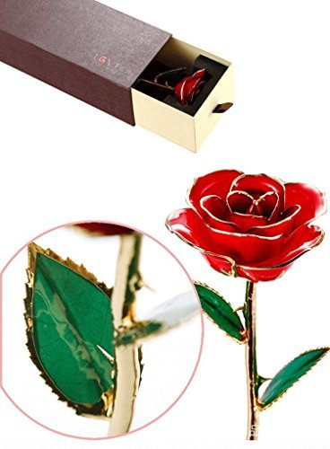econoLED Rose Flower, Best Gift for Valentine's Day, Mother's Day, Anniversary, Birthday Gift, Gift for Lover Mother Girlfriend, 24k Golden Plated Rose In Gift Box (Red)