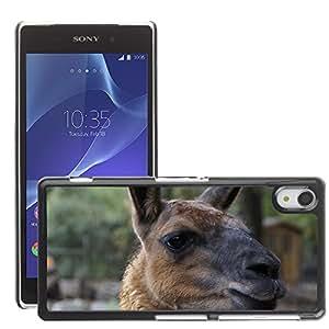 Hot Style Cell Phone PC Hard Case Cover // M00135474 Lama Lama Head Head Mammal Zoo // Sony Xperia Z2 L50W