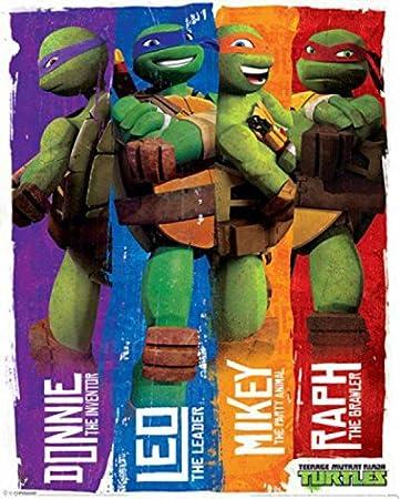 Las Tortugas Ninja - Donnie, Leo, Mikey, Raph, Personajes ...