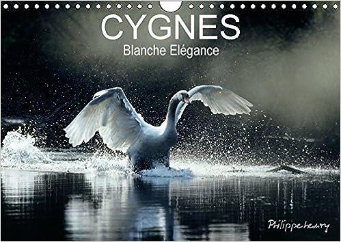 Lire un Cygnes. Blanche Elegance 2017: Les Plus Belles Photos De Cygnes Prises Dans Des Regions Sauvages De France Et De Finlande. pdf, epub