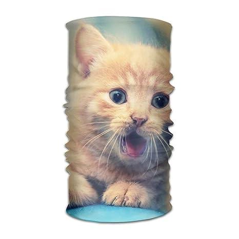 Corte Gato Mascota Cinta de Cabeza Original Múltiples Funciones ...