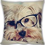 HARLAN yorkshire terrier face glasses Custom Zippered Leaning Cushion 40x40cm(16x16inch) Small Size 400g(0.88lb) (Twin sides Print)