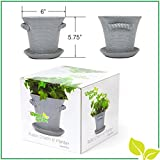 """Rustic Charm 6"""" Planter - Fine Home Décor Ceramic Indoor Pot. Perfect for Herbs, Flowers, Succulents or Starting Seeds. Beautifully Packaged, Great Gift for Mom, Office, Housewarming. (Slate White)"""