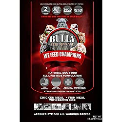 Image of the product Bully Performance BP16932 that is listed on the catalogue brand of Bully Performance.