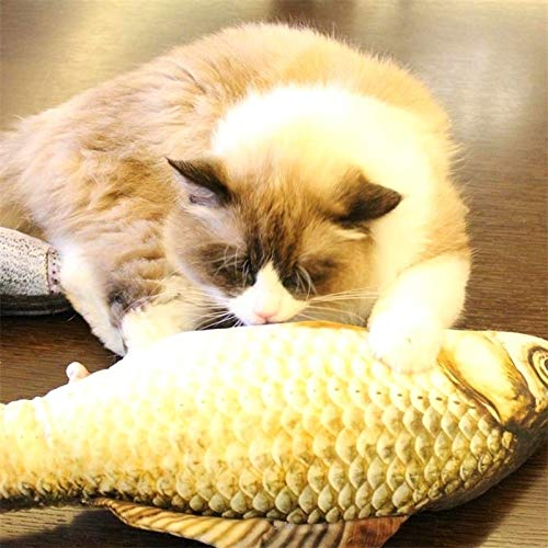 Chenyouwen Pet Toys Great Simulation Fish Toy Funny Cat Toy Fish Stuff Scratching Post Board Toy, Large Size: 57.0 x 22.0 x 13.0cm by Chenyouwen