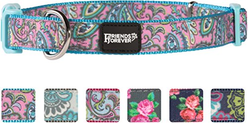 Paisley Cat Collar - Friends Forever Dog Collar for Dogs, Fashion Print Paisley Pattern Cute Puppy Collar, Blue Small 11-16