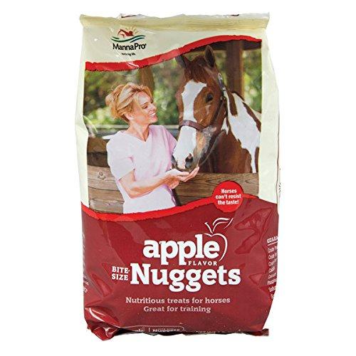51JEpX0E1yL - Bite-Size Nuggets Apple [Set of 2] Size: 1 Pound