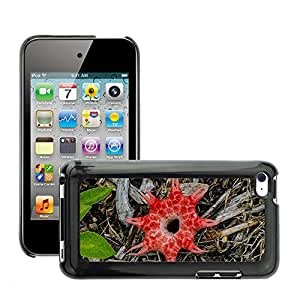 Hot Style Cell Phone PC Hard Case Cover // M00151112 Stink Horn Fungus Brown Red Wet // Apple ipod Touch 4 4G 4th