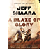 A Blaze of Glory: A Novel of the Battle of Shiloh (Civil War: 1861-1865, Western Theater series)