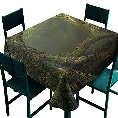 DONEECKL Dust-Proof Tablecloth Nature Old Tree Branches Growth Picnic W60 xL60