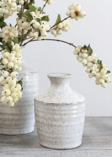(Floral Home Hari Ceramic Bud Vase in Distressed White - 4.5