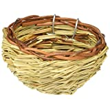 Prevue Hendryx Prevue Pet Products BPV1150 Canary Twig Birds Nest, 3-Inch
