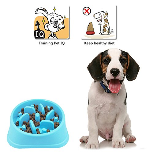 Ootdpet-Fun-Feeder-Slow-Feed-Dog-Bowl-Slow-Feed-Interactive-Bloat-Stop-Dog-Bowl