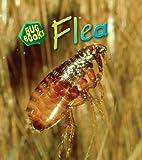 Flea, Karen Hartley and Chris Macro, 1432912518