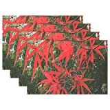 Heat Resistant Placemats for Kitchen Table Mats for Dinning Room,Autumn Red Leaves Washable Insulation Non Slip Placemat 12x18 inch 6pcs