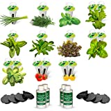 AeroGarden Salad Bar Seed Pod Kit (For Farm/Farm Plus models)