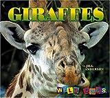 Giraffes (Wild Ones)