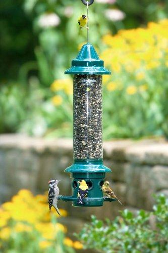 Squirrel-Buster-Plus-Bird-Feeder