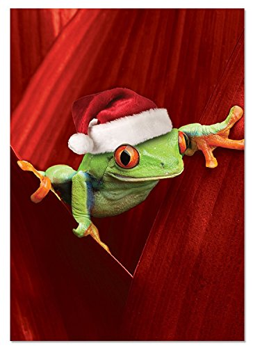- NobleWorks ''Yule Frogs'' Funny Merry Christmas Greeting Card, 5'' x 7'' (C1754EXSG)