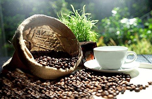 Brazilian Cerrado Coffee Beans
