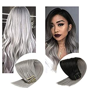 Sunny Grey Clip in Hair Extensions Human Hair 7pcs 120g Double Weft Clip in Hair Extensions Grey Clip in Extensions…