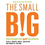 The Small BIG: Small Changes that Spark Big Influence | Robert Cialdini,Noah Goldstein,Steve Martin