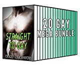 Straight to Gay: 20 Gay Stories Bundle Collection