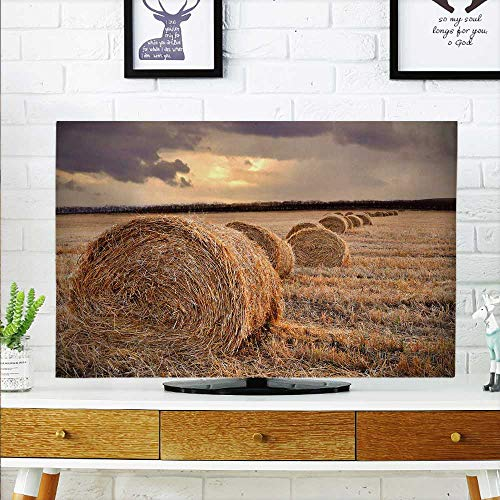 aolankaili Cover for Wall Mount tv Autumn Harvest Rice Fields at Dusk Cover Mount tv W20 x H40 INCH/TV 40
