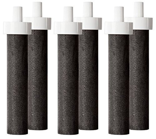 hard sided bottle replacement filter