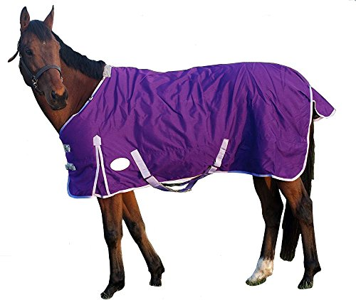 Derby Originals Deluxe 600D Nylon Turnout Winter Blanket- Horse and Pony Sizes, Purple, (Blanket Horse Tack)