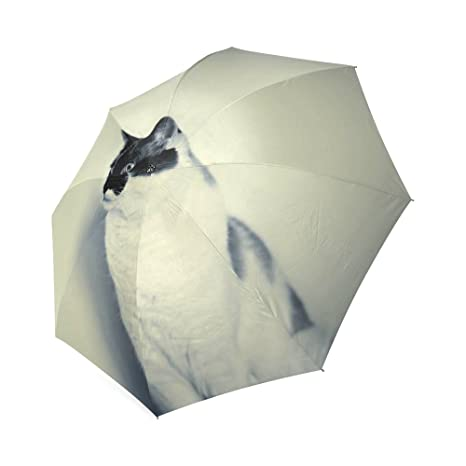 5e9f47df23d2 Amazon.com: Customized Unique Hipster Cats Folding Rain Umbrella ...