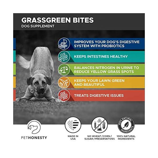 PetHonesty GrassGreen Grass Burn Spot Chews for Dogs - Dog Pee Lawn Spot Saver Treatment Caused by Dog Urine - Cranberry, Apple Cider Vinegar, DL-Methionine Grass Treatment Rocks - 90 Chew Treats 3