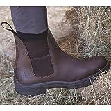 Mark Todd Adults Short Kiwi Waterproof Boots (9 US) (Brown)