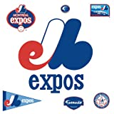 Fathead 63-63293 Wall Decal, Montreal Expos Classic Logo