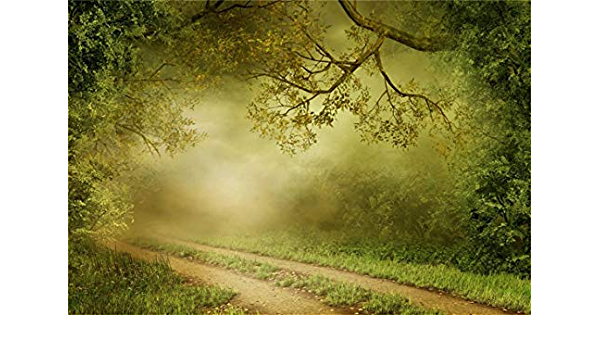 LFEEY 9x6ft Vinyl Green Forest Backdrops for Photography Background Grunge Wooden Fence Grass Field Ancient Tree Sprinig Landscape Outdoor Holiday Party Backdrop Children Adults Portraits Photo Studio