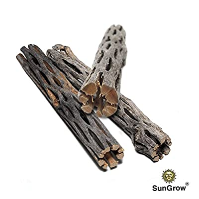 SunGrow Natural Cholla Wood, 3 Pieces, 5 inches Long: Aquarium Decoration and Chew Toys for small pets by SunGrow
