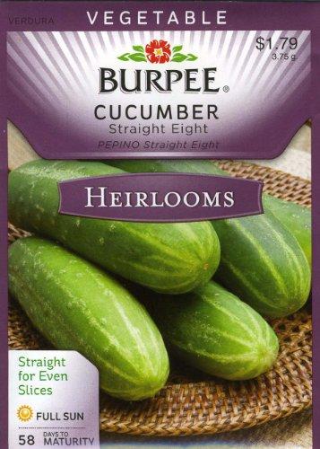 Burpee Cucumber Straight Eight Heirloom product image