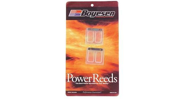 Boyesen 625 Power Reed