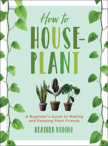How to Houseplant: A Beginners Guide to Making and Keeping Plant Friends