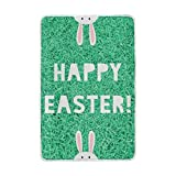 My Little Nest Happy Easter Green Grass Rabbit Cozy Throw Blanket Lightweight Microfiber Soft Warm Blankets Everyday Use for Bed Couch Sofa 60'' x 90''