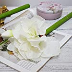 Floral-Kingdom-Real-Touch-30-XLarge-Artificial-Amaryllis-Flowers-for-vase-Arrangements-HomeOffice-Decor-Pack-of-3-Cool-White