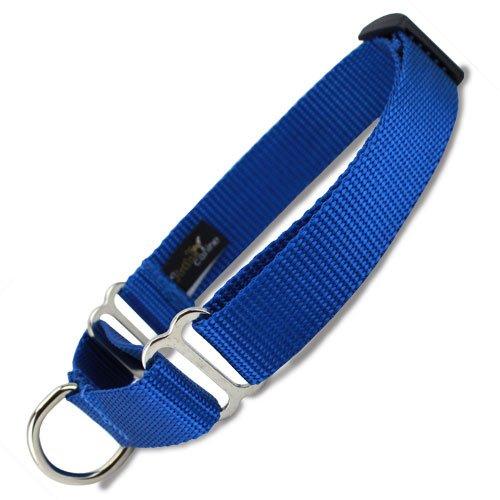 Martingale Dog Collar, Nylon, Blue, X-Small, Small, Medium, Large, X-Large